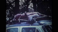 Dead deer  tied on top of the land vehicle Stock Footage