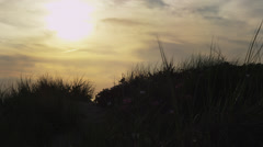 Sunset over dune grass on Cape Cod Stock Footage