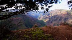 Glidecam revealing Waimea Canyon Stock Footage