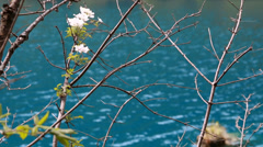 A blue lake in jiuzhaigou valley national park in china dolly Stock Footage