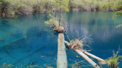 Beautiful clear blue lake in jiuzhaigou valley national park in china dolly Stock Footage