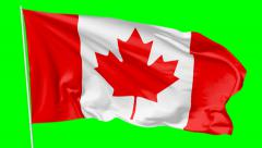 Flag of Canada on flagpole, greenscreen Stock Footage