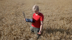 Agriculture, agronomy expert inspect wheat, using laptope, - stock footage