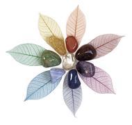 Healing Chakra Crystal on Skeleton Leaves Kuvituskuvat