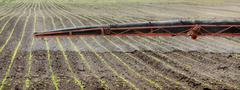 Agriculture, field spraying Stock Photos