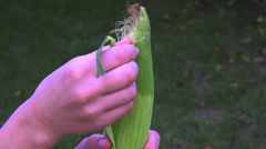 Peeling a corn cob Stock Footage