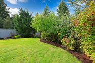 Stock Photo of backyard landscape design