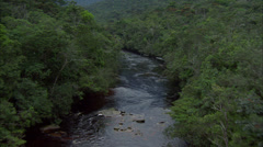 Rainforest River Stock Footage