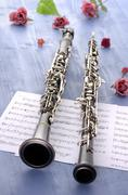 Oboe and clarinet summer feeling Stock Photos