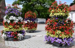 Original flower beds - stock photo