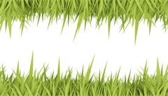 Green grass concept card rendered Stock Illustration