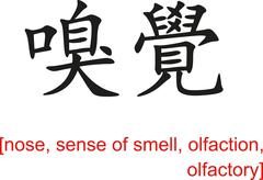 Chinese Sign for nose, sense of smell, olfaction, olfactory - stock illustration
