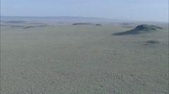 Savanna Africa Wildebeest Grasslands - stock footage