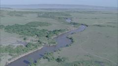 Savanna Trees River Stock Footage