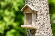 Stock Photo of Small Bird House