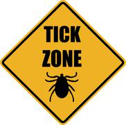 Tick zone warning sign Stock Illustration