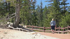 Bryce Canyon National Park trail woman hiking Utah HD 139 Stock Footage