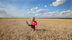 Stock Video Footage of Female agronomist examine wheat field