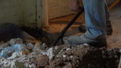 Construction worker breaking concrete shoveling rubble Stock Footage