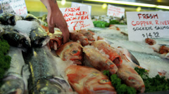 Fresh Pacific Red Rock Fish Pike Place Market, Seattle, USA Stock Footage