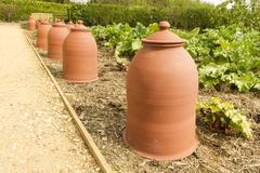 terracotta rhubarb forcing pots in a row. - stock photo