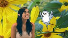 1 elf animated bird 2 Stock Footage