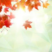 Abstract autumn illustration with maple Leaves. - stock illustration