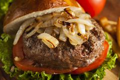 gourmet hamburger with lettuce and tomato - stock photo