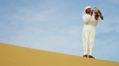 Tethered Bird Prey Arab Falconers Wrist Desert Stock Footage