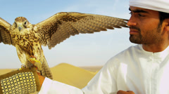 Bird of Prey with Male Middle Eastern Owner Stock Footage