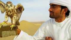Arabic Male Traditional Dress Displaying Trained Saker Falcon - stock footage