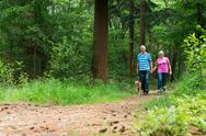Stock Photo of senior couple walking with dog in nature