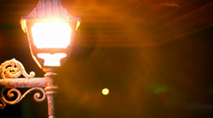 Light lantern glowing at night and gecko hiding behind lamp. Video Stock Footage