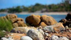 Grass on sand dune, stones and azure sea water of rocks beach, Koh Samui island, Stock Footage