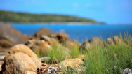 Stock Video Footage of Grass on sand dune, stones and azure sea water of rocks beach, Koh Samui island,