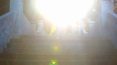 Video ascending stairs and a large tree with sunlight in sky. Lense flare effect Stock Footage