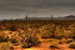 desert storm approaching - stock photo