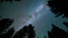 Milky Way Forest time lapse - 1080p - stock footage