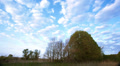 landscape  with  blue clouds and sky  Time lapse without birds . Footage