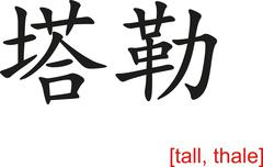 Chinese Sign for tall, thale Stock Illustration