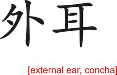 Chinese Sign for external ear, concha - stock illustration