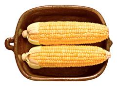 Rustic golden raw uncooked corncob Stock Photos