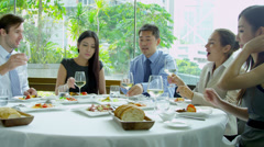 Male Female Multi Ethnic Business People Lunch Reward - stock footage