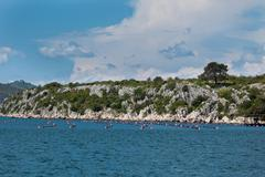 Mussels growing in adriatic sea, croatia Stock Photos
