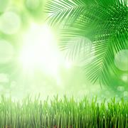 Natural green background with selective focus Stock Illustration