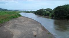 Crocodiles in Tarcoles River Stock Footage