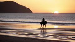 A horse and rider on the beach at sunrise - stock footage