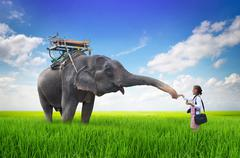 Stock Illustration of woman feeding the elephant bananas