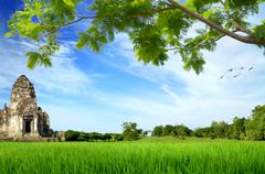 Historic site on green meadow with tree Stock Illustration