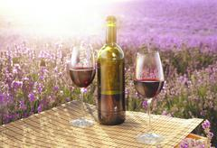 Red wine bottle and glass. Stock Photos